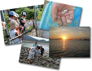 しまなみ子ども農山漁村交流プロジェクトイメージ写真