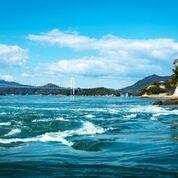 潮流を存分に満喫できる、能島周辺をめぐります。